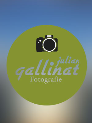 Logo von Julian Gallinat Design